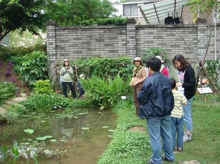 水生木的名字_10种水生植物冬日绿色生活选择_低碳生活